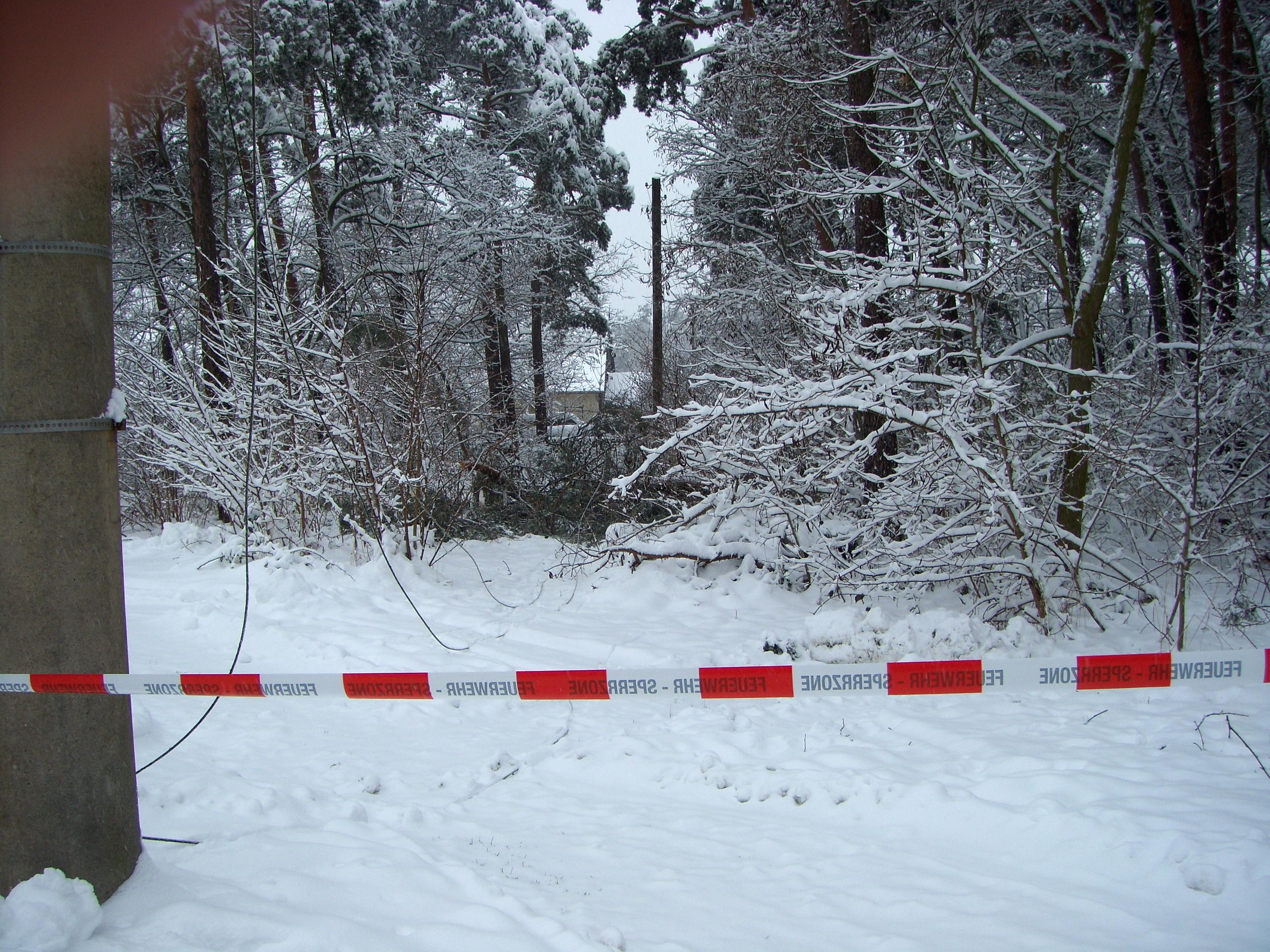 2010-01-03 TH klein (2)