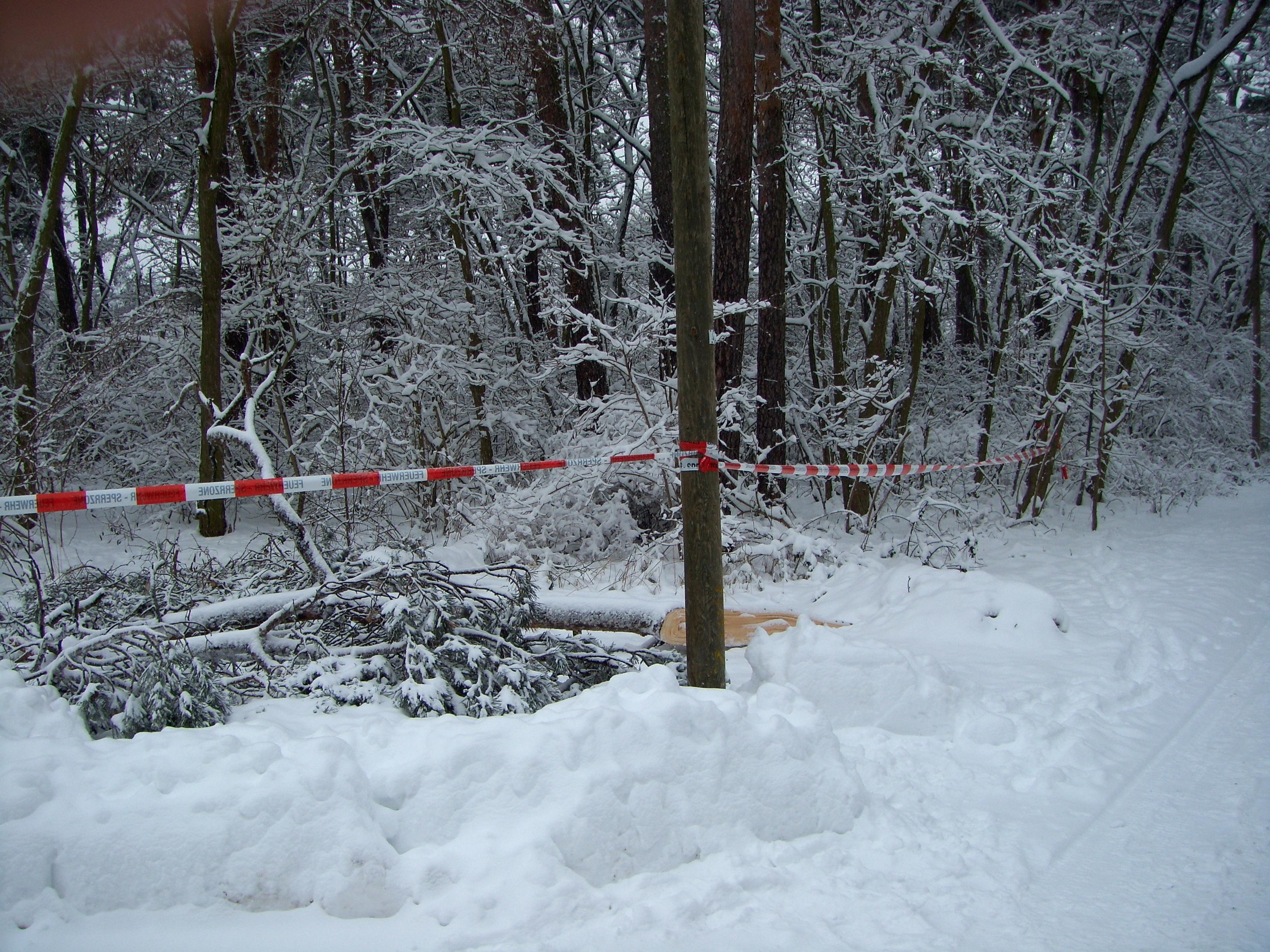 2010-01-03 TH klein (4)