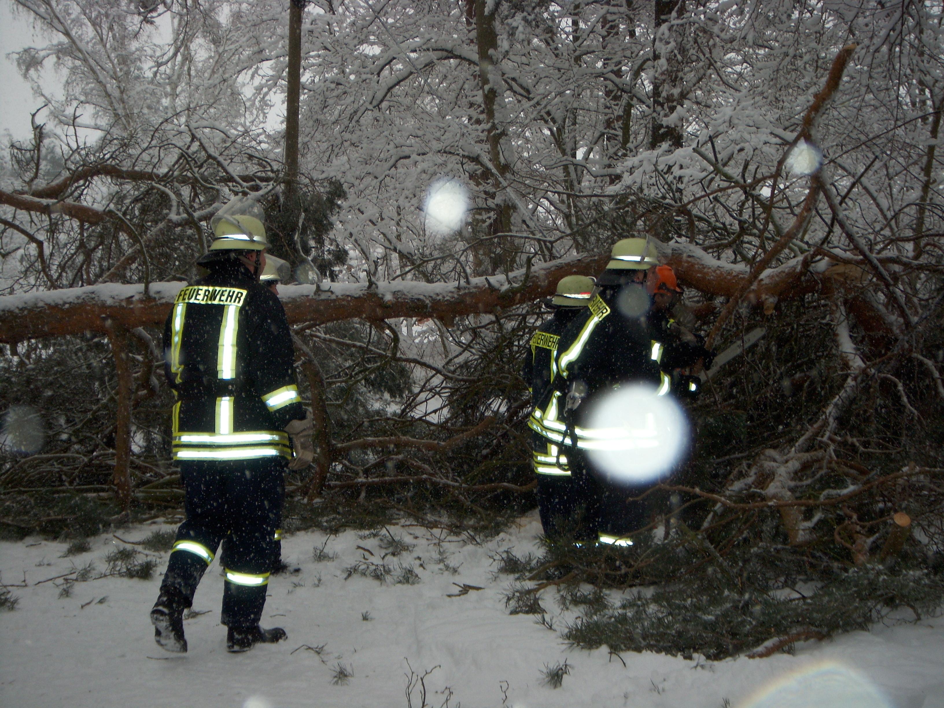 2010-01-03 TH klein (5)