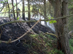 2011-04-29 Einsatz Mittelbrand (6)