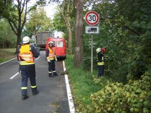 2011-09-12 TH klein (1)