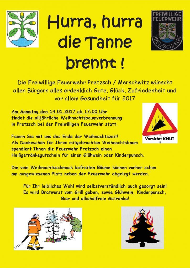 weihnachtsbaumverbrennungamtsblatt 2017