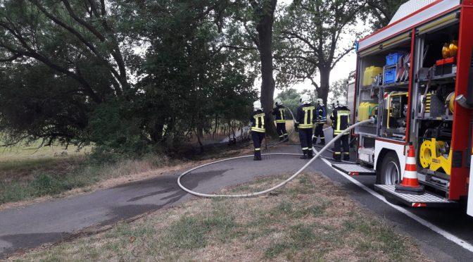 2018/6/15 Einsatz Flächenbrand 1 L128 Richtung Fähre