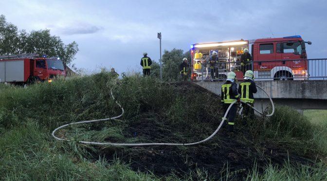 2018/6/1 Einsatz Flächenbrand 1 L128 Richtung Fähre