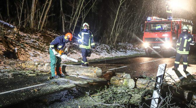 2021/01/13 Einsatz TH klein Lausiger Teiche Sturm